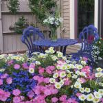 Privacy seating in our gardens