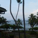 View from oceanview #347