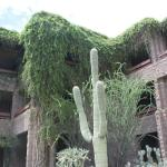 Foto de Loews Ventana Canyon Resort