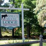 Spruce Moose Lodge and Cottages Foto