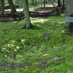 The confederate soldiers final resting place