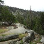 On Tokopah Falls Trail