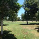 Looking onto the golf course