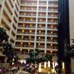 صورة فوتوغرافية لـ ‪Embassy Suites by Hilton Chicago Downtown‬