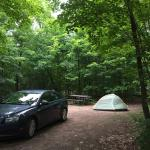 Photo de Canisbay Lake Campground