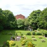View of back garden from my room