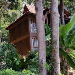one of the chalets in the rainforest
