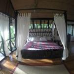Foto de Table Rock Jungle Lodge