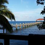 Hatchet Caye Resort의 사진