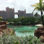 Atlantis Beach Tower, Autograph Collection照片