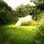 Camping space.