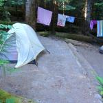 Site D5 - had two good areas for tents