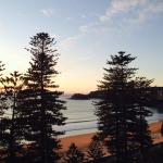 Manly and Shelly Beach early morning view from room