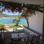 Photo de Hotel Platis Yialos