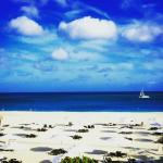 Foto van Bucuti & Tara Beach Resorts Aruba
