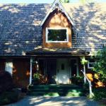 Green Cat Guest House and B&B Foto