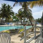 Photo de Coconut Cove Resort and Marina