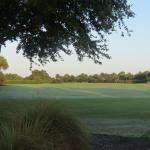 Other part of golf course