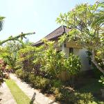 Amed Harmony Cafe and Bungalows Foto