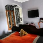 "Main house guest room - orange highlights and ""Coo"""