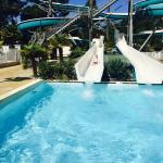 Photo de Aquatique Club Camping La Pinede