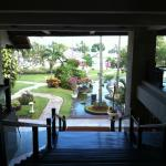 Garden view from Lobby