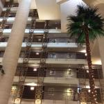 Φωτογραφία: Sheraton Dubai Creek Hotel & Towers