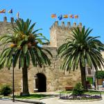 Derbyway Ninebot Segway Alcudia Tours