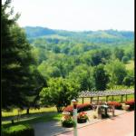 Foto de Wilson Lodge at Oglebay Resort & Conference Center