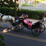 View of horse drawn carriage from our private balcony