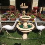 The Bird bath just outside the hotel