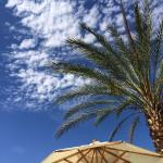 Riviera Palm Springs, A Noble House Resort Foto