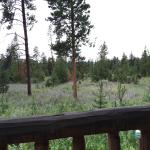 View from one side of Mariposa Cabin deck
