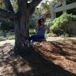 Being a kid swinging from a tree