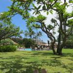 Kaanapali Beach Hotel - under the plumeria