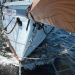 Maine DaySail and the Schooner Timberwind