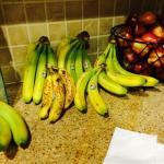 Morning breakfast... Choice of camoflouged overripe bananas or inedible green bananas