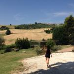 Agriturismo Il Gelso Antico의 사진