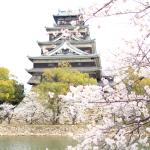 Photo of Hiroshima Castle