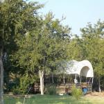 Photo of Wildcatter Ranch