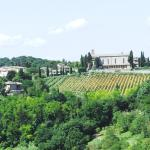 View out of Poggibonsi historical site to Monastry and vinyards