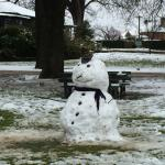snowman in Cook Park nearby