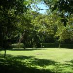 The lawn around the hotel premises.