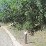 parking for our campsite