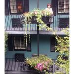 My mom in the beautiful Indigo Inn center courtyard. Loved our 3rd floor room!