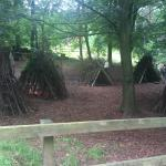 Foto di Center Parcs Whinfell Forest