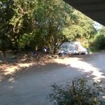 Photo de Camping Internazionale di Castelfusano