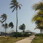 Photo de Nisbet Plantation Beach Club