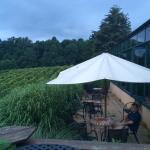 Photo de Glass House Winery Bed and Breakfast