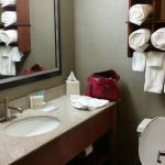 Hampton Inn I-75 Lexington/Hamburg Area Foto